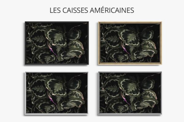 Photo-quartz-caisse-americaine