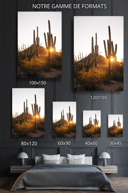Photo-stay-formats-deco
