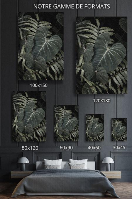 Photo-terrana-formats-deco
