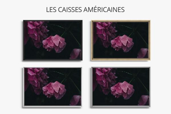 Photo-venus-caisse-americaine