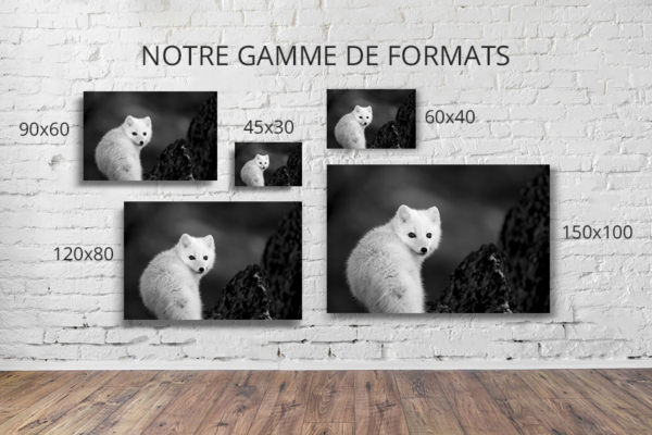 Collection-hiver-formats-deco