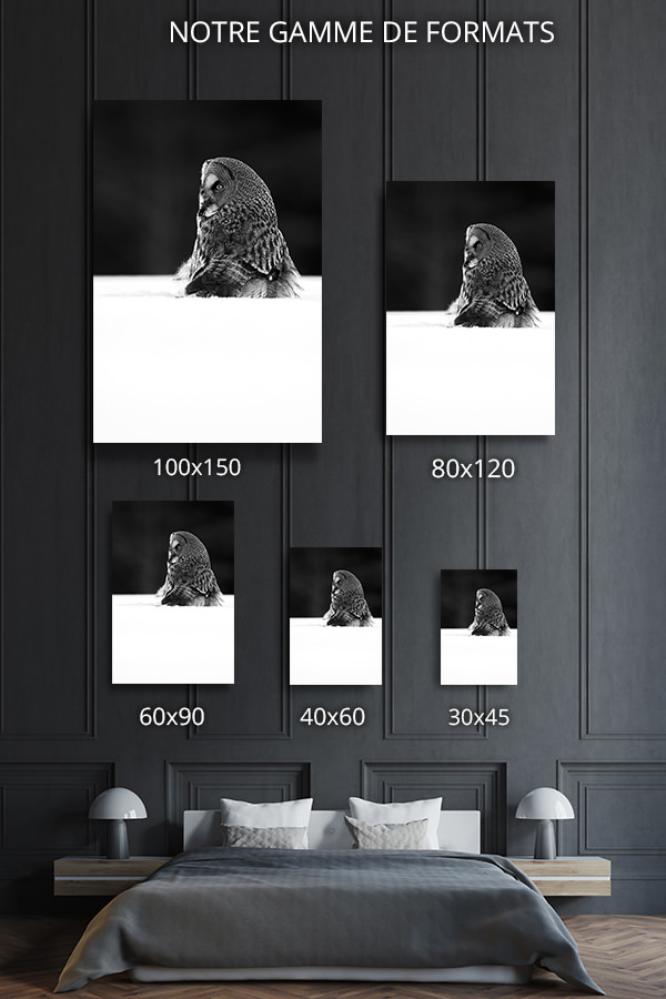 Photo-a-lecoute-formats-deco