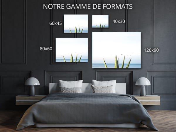 Photo-bleu-agave-formats-deco