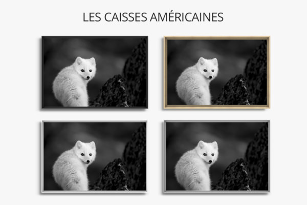 Photo-collection-hiver-caisse-americaine