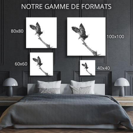 Photo-de-justesse-formats-deco