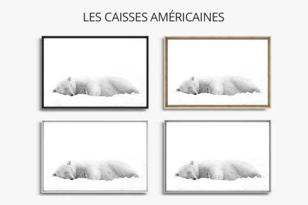 Photo-derriere-caisse-americaine