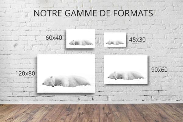 Photo-derriere-la-douceur-formats-deco