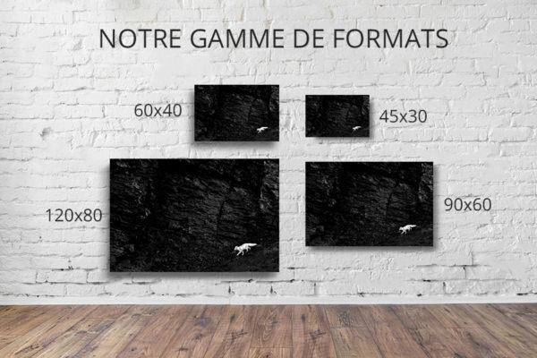 Photo-en-transit-formats-deco