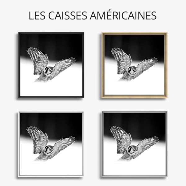 Photo-si-rapide-caisse-americaine