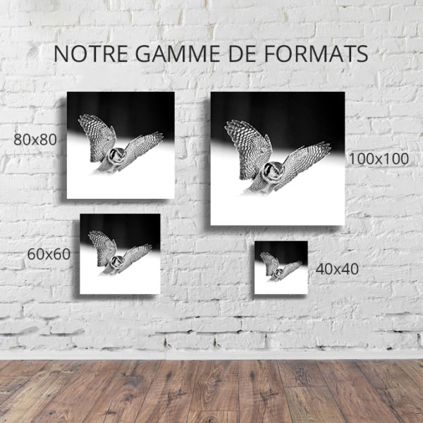 Photo-si-rapide-formats-deco