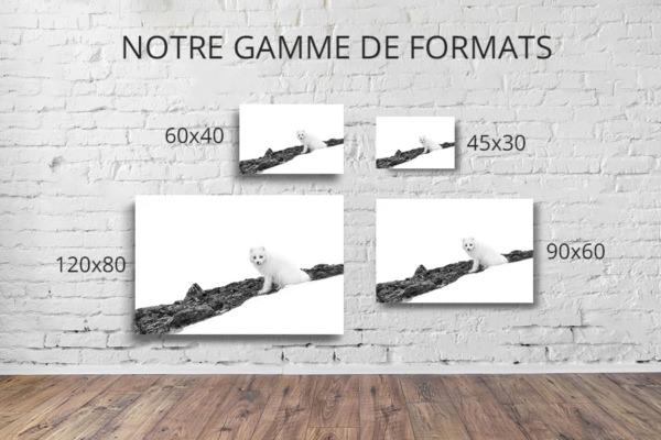 Photo-sport-dhiver-formats-deco