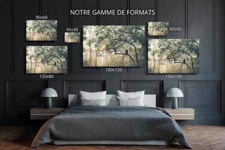 Photo-le-sage-formats-deco
