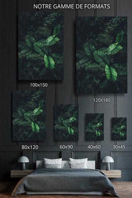 Photo-nuances-de-vert-formats-deco
